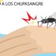 Eliminando a los chupasengre Pura Vida Quiropráctica